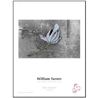 HAHNEMUHLE BOBINA WILLIAM TURNER 310GR 61CM X 12MTS